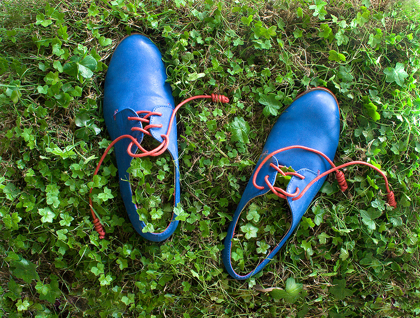 Lawn Shoes Conceptual Art by Karina Sharpe