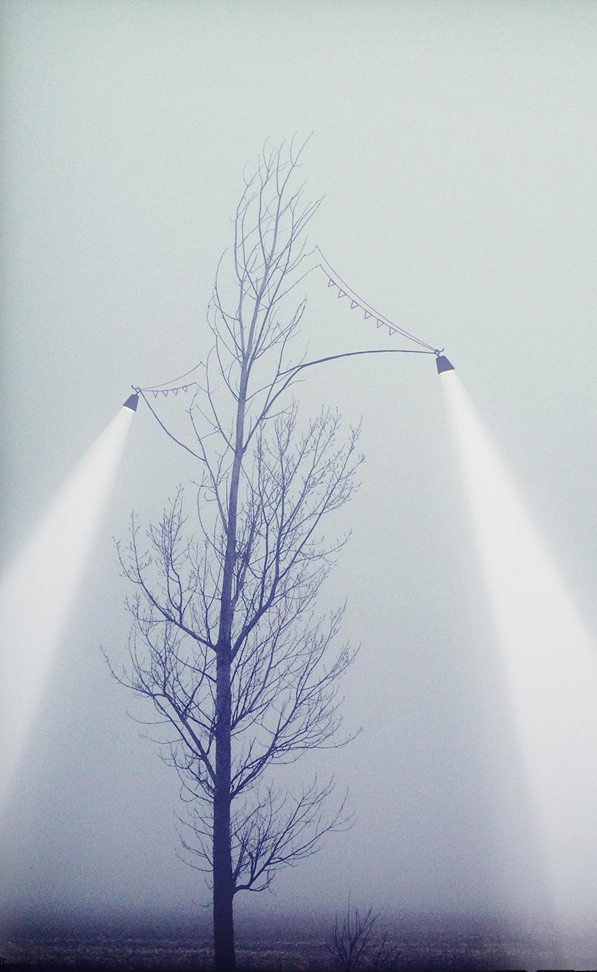The Lone Tree, Conceptual Art collaboration between Karina Sharpe and Vanessa Ray
