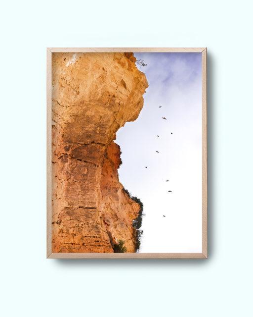 Birddance Med - framed without the border